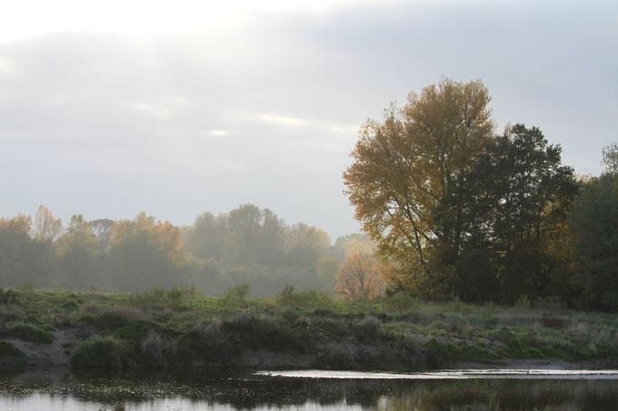 La Loire des îles
