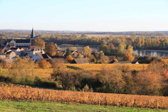 Vue de Pouilly, des vignes et de la Loire