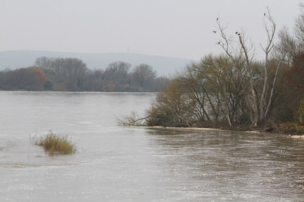 La Loire en crue le 25 novembre 2016