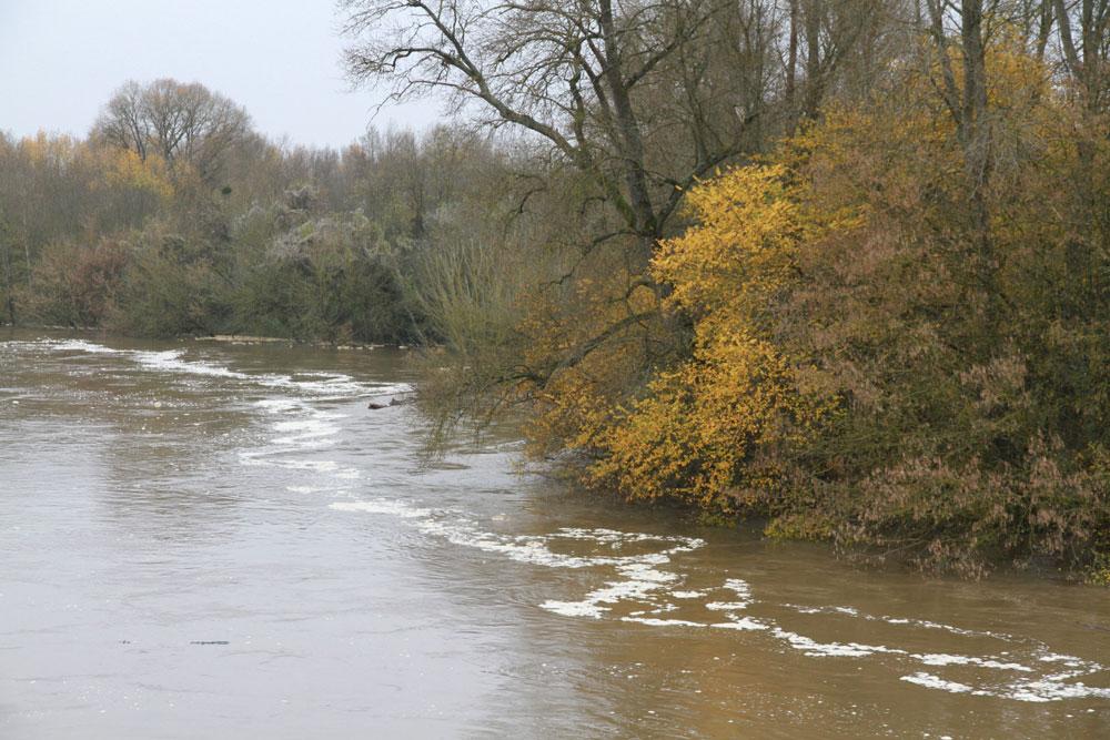 La Loire en crue à Pouilly-sur-Loire le 25 novembre 2016