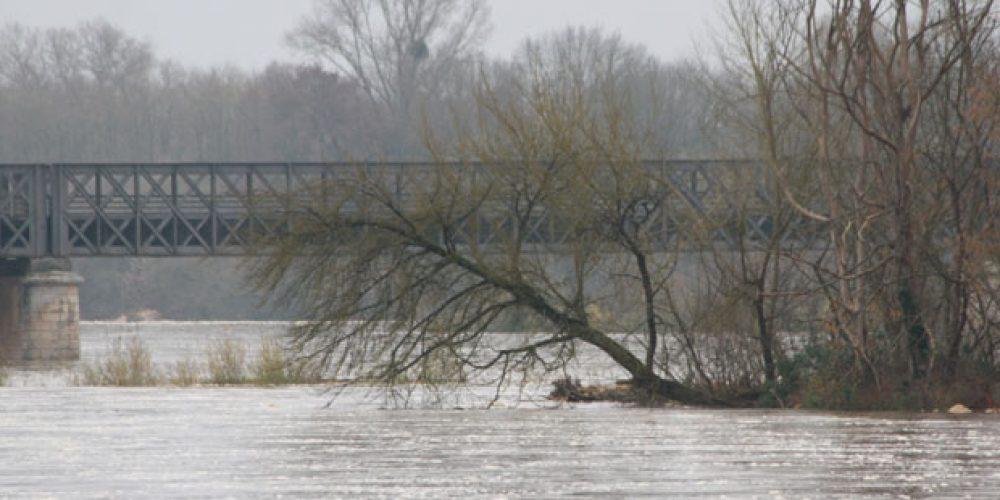 La Loire en crue à Pouilly