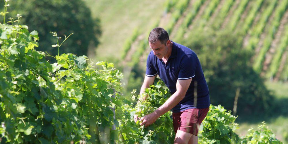 Patrice Bailly vigneron du mois de pouilly-sur-loire.com 2017