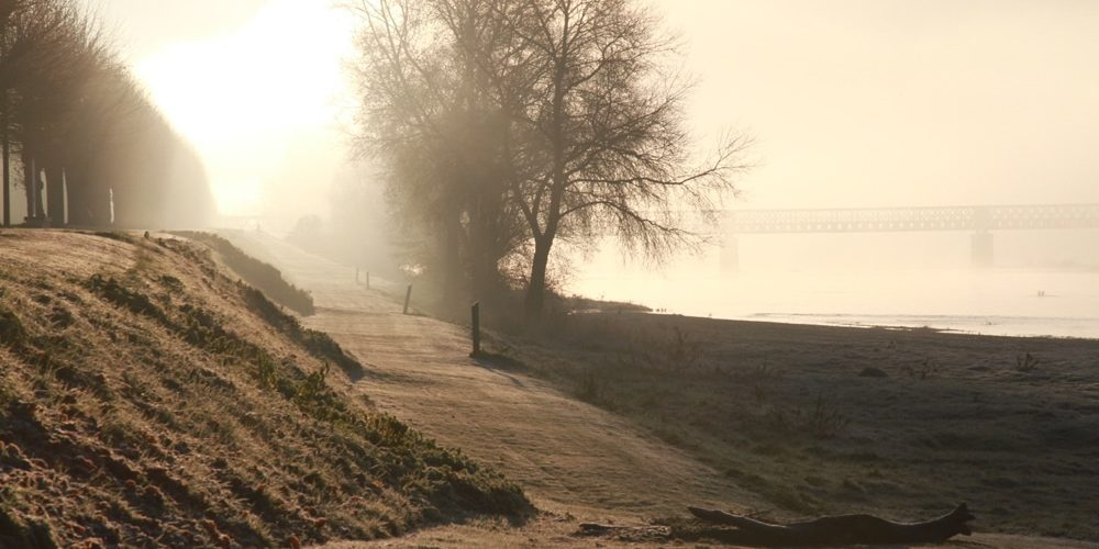 Gel à Pouilly-sur-Loire